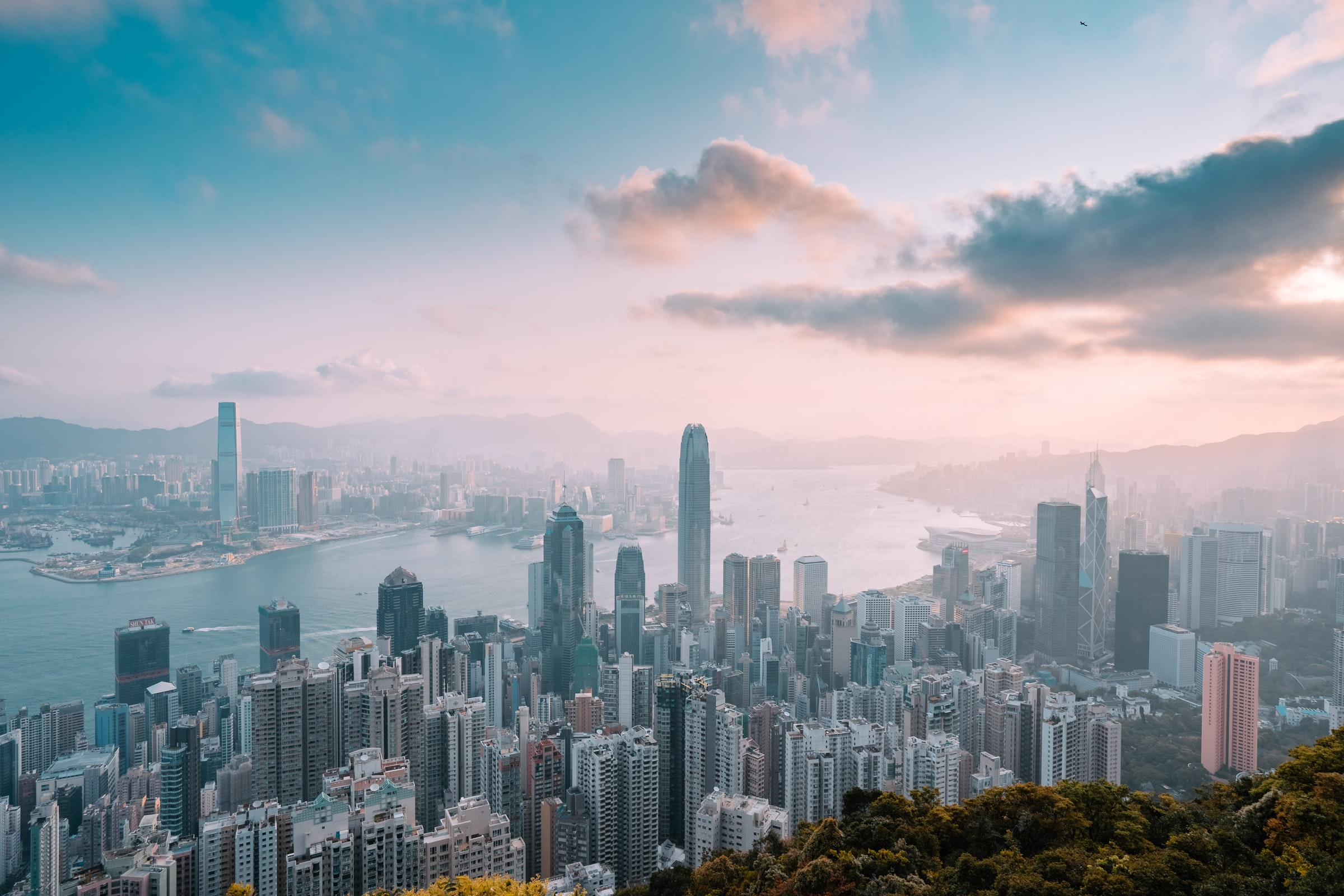 When schools in Hong Kong closed for COVID-19, Stanford ...