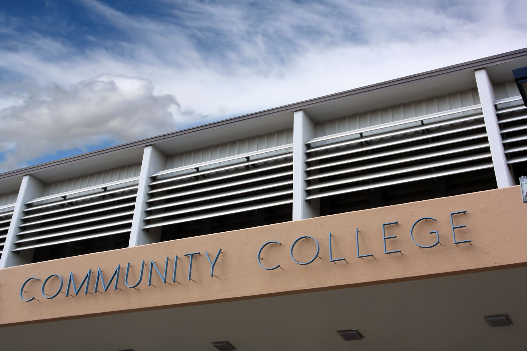 Faculty Role in Scaled and Sustained Community College ...