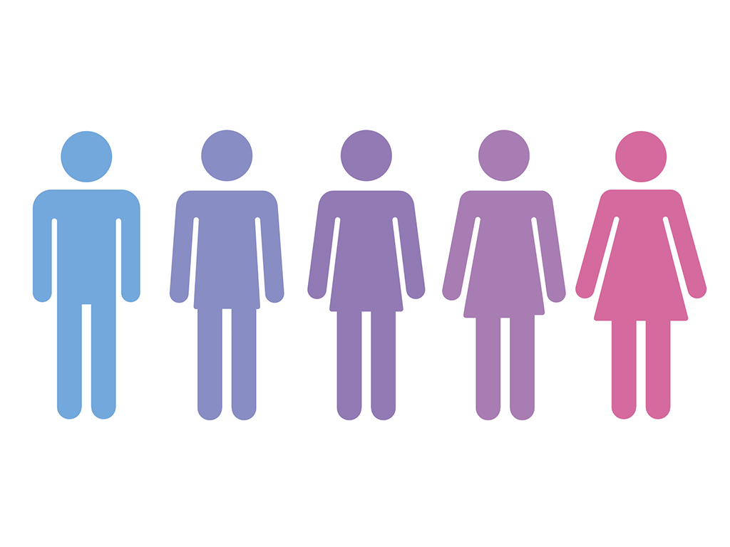 an illustration of genders
