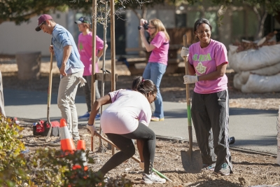 Stanford students plant trees on campus in 2013. Professor William Damon sees such activities as leading to a sense of purpose. (Linda A. Cicero / Stanford News Service)