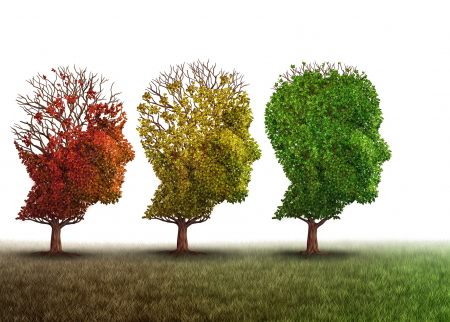 Stock photo of trees growing