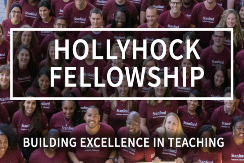 Hollyhock Fellowship | Building Excellence in Teaching