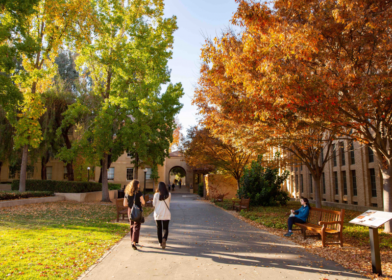 Photo of campus in fall