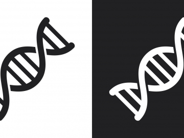 illustrations of DNA helixes